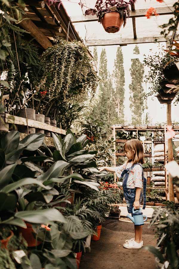 jardin-plantas-pueblo