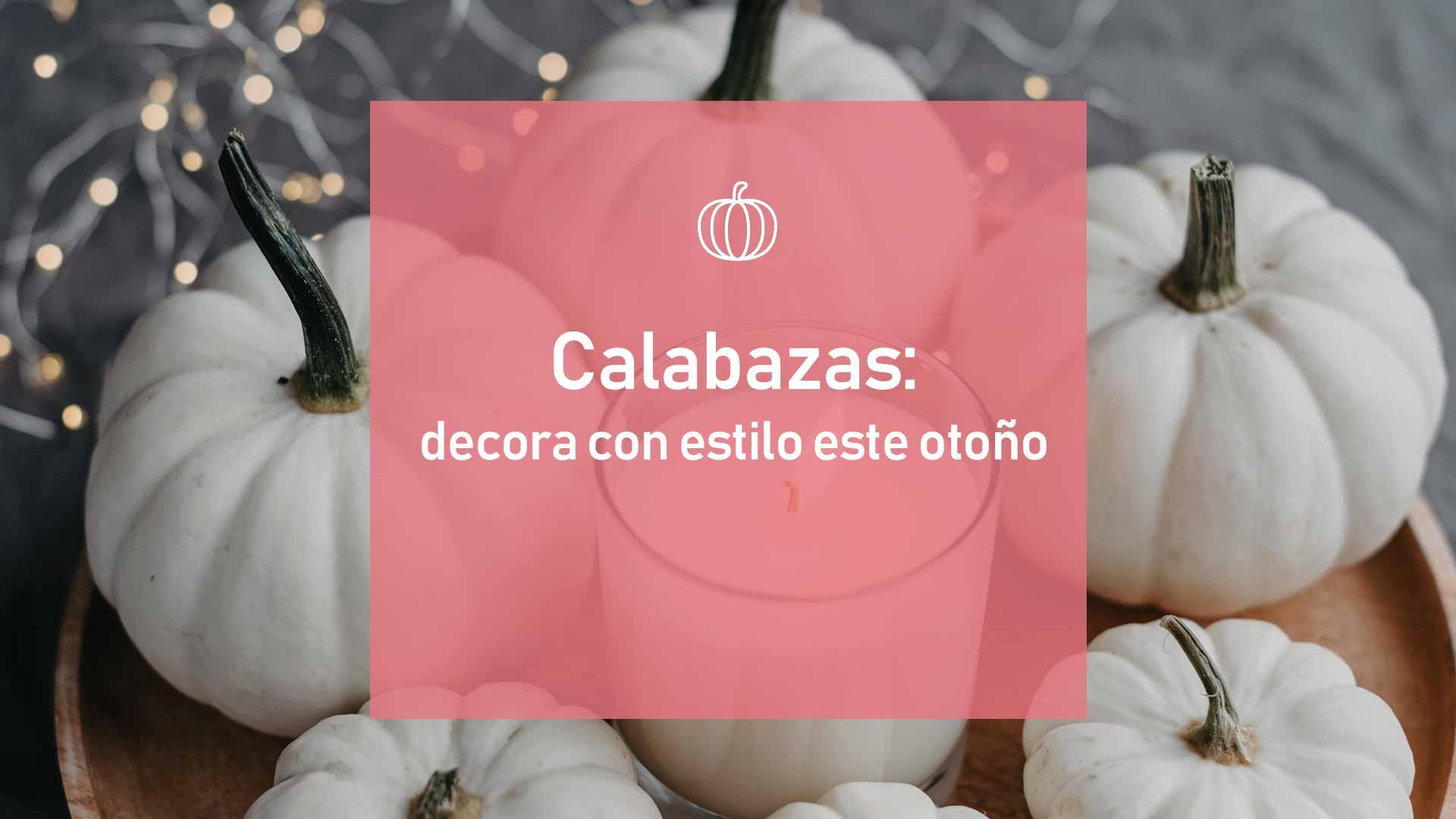 calabazas-blog-reforma-pamplona